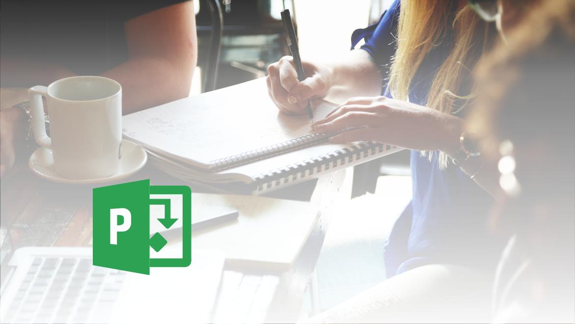 Microsoft Office Project - Večpogodbeni projekt - članek