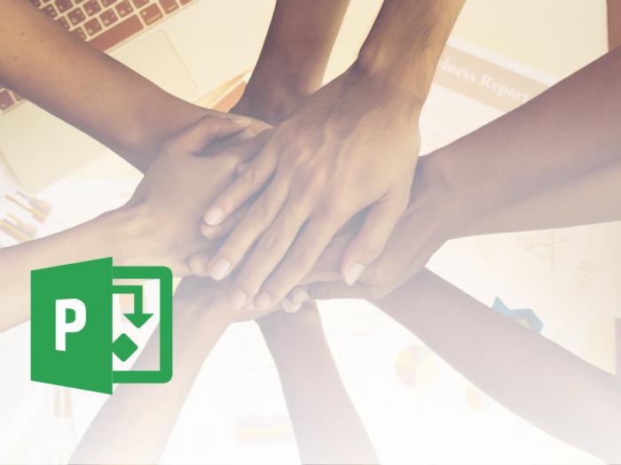 Microsoft Office Project - dodeljevanje delovnih sredstev